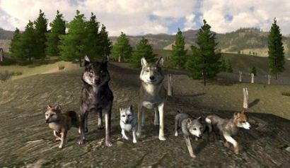 Скачать игру wolfquest и wolfquest survival of the pack